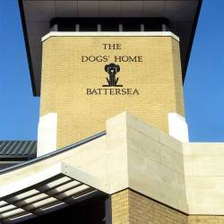 battersea-dogs-home-head-offices-01